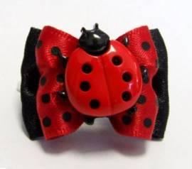 Schleife *Marienkäfer* Big Bug - Bild vergrößern