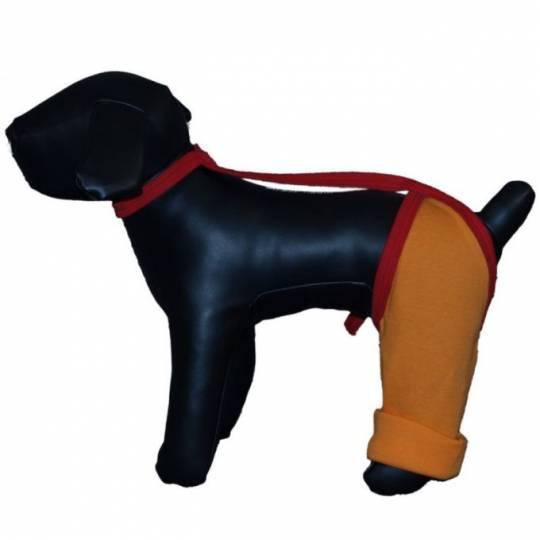Hunde Zauberland: OP-Body