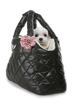 Bella Carrier Puppy Angel schwarz